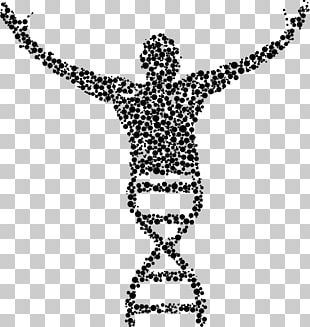 Genetics DNA Biology Nucleic Acid Double Helix PNG