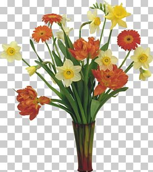 Flower Tulip Daffodil Rose PNG