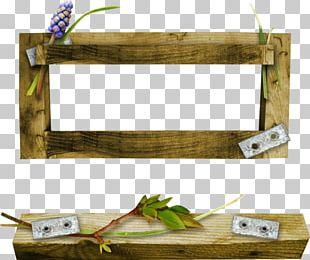 Frames Film Frame Photography PNG