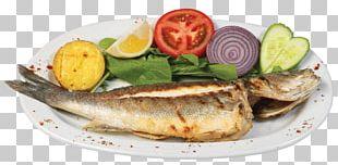 Grilling Fish Kipper Bass Gilt-head Bream PNG