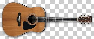 Acoustic Guitar Guitarist Musical Instruments Acoustic-electric Guitar PNG