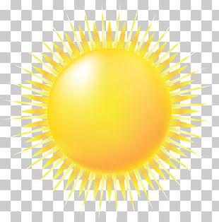 Yellow Circle Pattern PNG