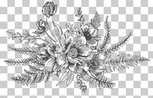 Drawing Flower Bouquet Floral Design PNG