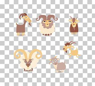 Goat Sheep Euclidean PNG