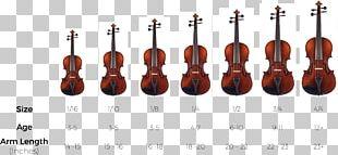 Bow Violin Cello String Instruments Viola PNG