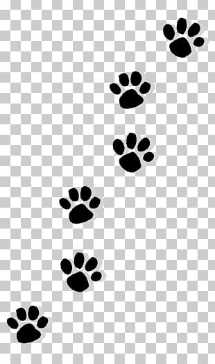 Dog Paw Printing Desktop PNG, Clipart, Animals, Claw, Color