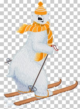 Polar Bear Skiing PNG
