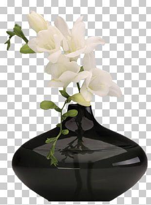 Vase Flower Floral Design PNG