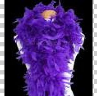 Feather Boa Purple Costume Violet PNG