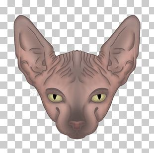 Sphynx Cat Donskoy Peterbald Ukrainian Levkoy Kitten PNG
