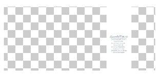 Brand White Pattern PNG
