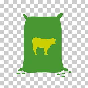 Nutrient Fertilisers Pellet Fuel ISGEC Biomass PNG