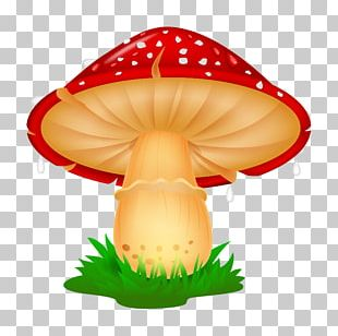 Mushroom Drawing Cartoon Illustration PNG
