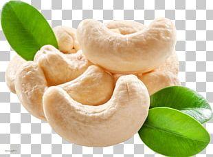 Cashew Dried Fruit Nut PNG