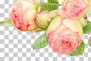 Painting Art Graphic Design Illustration PNG