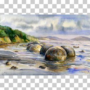 Watercolor Painting Art Moeraki Boulders Beach PNG