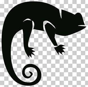 Chameleons Drawing Lizard Silhouette PNG