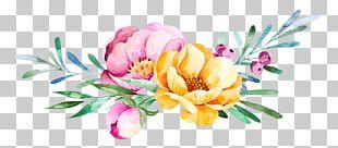 Wedding Invitation Succulent Plant Flower PNG