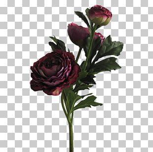 Garden Roses Floral Design Portable Network Graphics Flower PNG