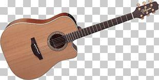 Steel-string Acoustic Guitar Cort Guitars Acoustic-electric Guitar PNG