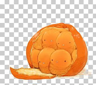 Mandarin Orange Cartoon Illustration PNG