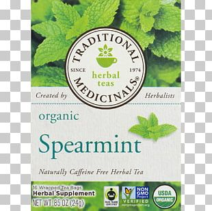Green Tea Mentha Spicata Peppermint Organic Food PNG