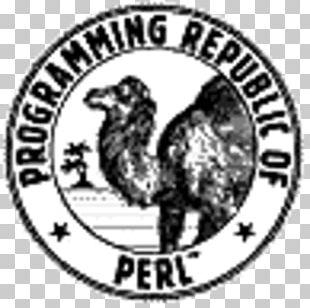 Computer Program Programming Language Programmer User Interface PNG