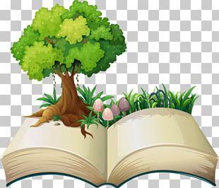 Book Illustration PNG