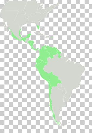 Latin America And The Caribbean United States South America Central America PNG