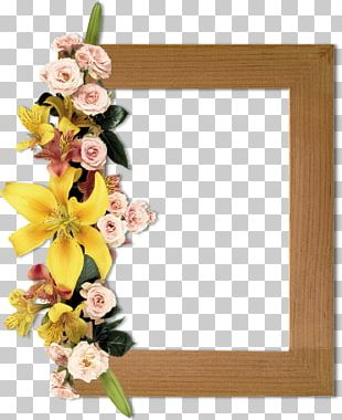 Floral Design Frames Photography Flower PNG