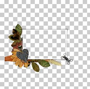 Insect Painting Membrane PNG