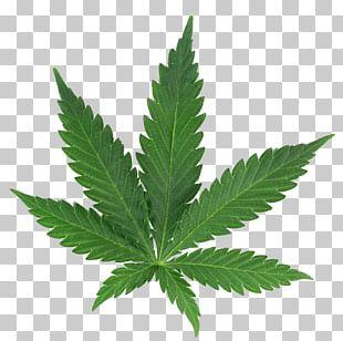 Medical Cannabis Cannabis Cup Cannabis Shop PNG