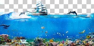 Underwater World PNG
