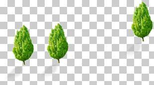 Leaf Tree Pattern PNG