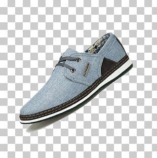 Sneakers Skate Shoe Walking PNG