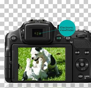 Digital SLR Panasonic Lumix DMC-FZ200 Panasonic Lumix DMC-FZ300 Camera Lens Bridge Camera PNG