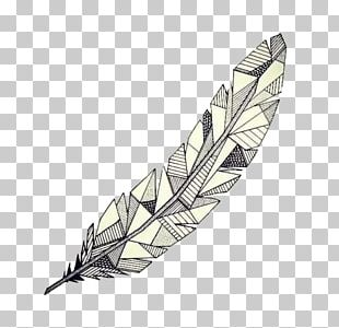 Drawing Feather Geometry Watercolor Painting Sketch PNG