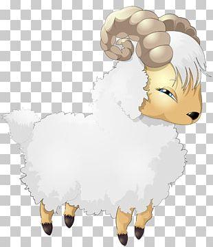 Sheep Cartoon Drawing PNG