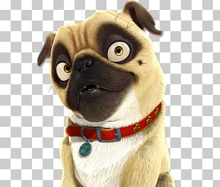 YouTube Pug Surly Film PNG