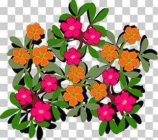 Herbaceous Plant Flower Arranging Branch PNG