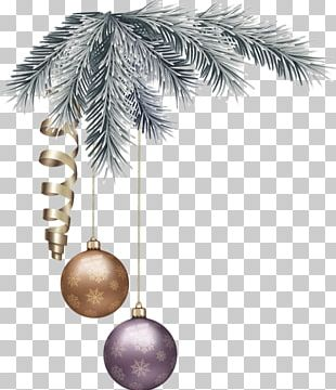 Fir Christmas Decoration Arecaceae Christmas Ornament Tree PNG