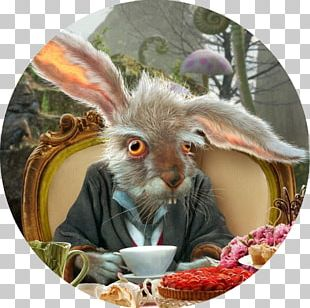 White Rabbit The Mad Hatter Caterpillar Alice's Adventures In Wonderland Red Queen PNG