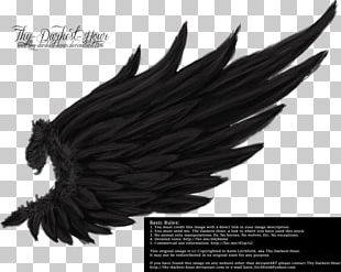 Drawing Angel Wing Photography PNG