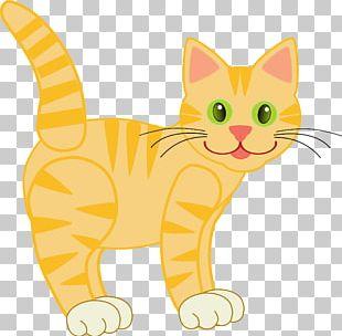 Cat Kitten PNG