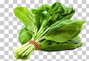 Veggie Burger Leaf Vegetable Salad Bell Pepper PNG