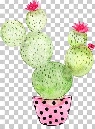 Cactaceae Poster Breakfast Under The Big Birch Cactus Garden PNG