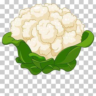 Cauliflower Cartoon PNG