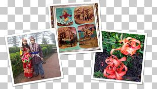 Polaroid Corporation Cognac Instant Camera Food Tourism PNG