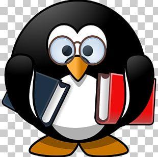 365 Penguins Reading PNG