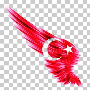 I Duvarkapla.co | Wall Paper Flag Of Turkey Ottoman Empire Istanbul PNG